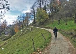HourAway-Ljubljana-Mountain-Biking-Tour-Photo-Gallery-02