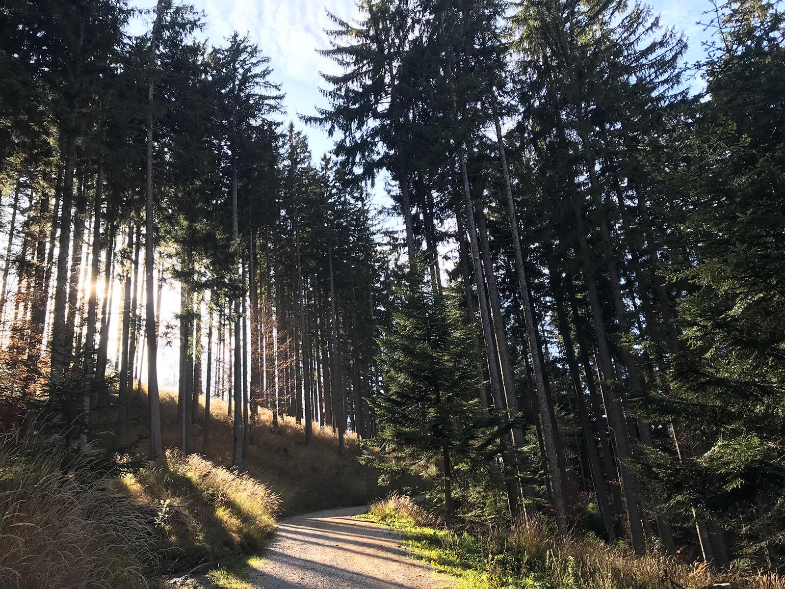 HourAway Best cyclying tours in Slovenia Slovenian Tuscany Goriska Brda