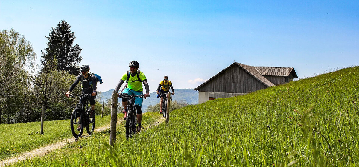 Bike and hike holidays Slovenia friends cycling in the fields