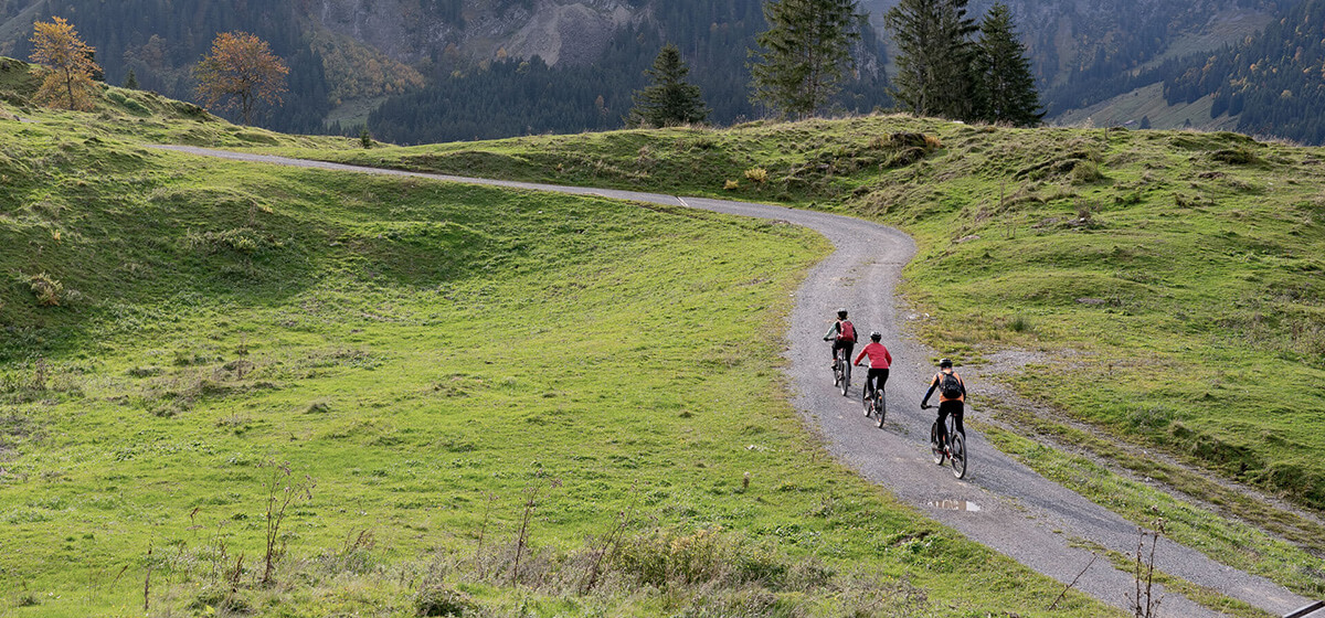Cycling Holidays Slovenia Country Drive