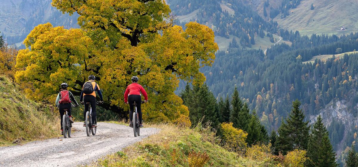 Cycling Holidays Slovenia Mountain Drive